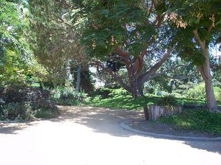 Arboretum walk2